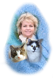 Michelle and the blanket cats